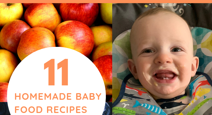 Avocados, Blueberries, and Peaches, Oh My! 11 Homemade Baby Food Recipes