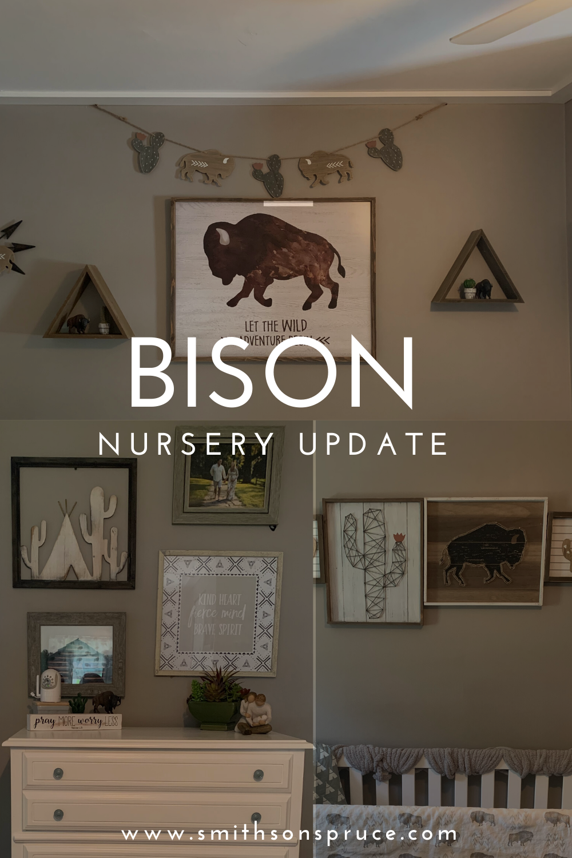 Bison Baby Nursery Update